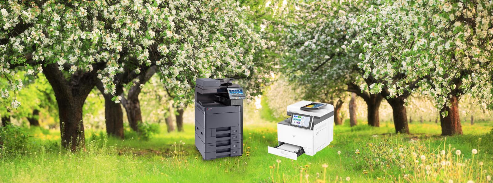 Achtergrond duurzaam printen Betuwe Gelderland